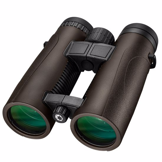 10x 42mm WP Embark Open Bridge Binoculars