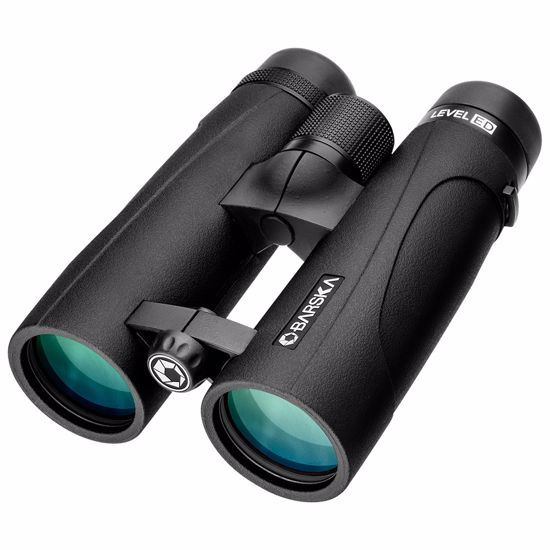 10x 42mm WP LEVEL ED Open Bridge Binoculars Black