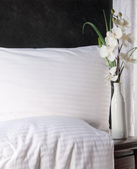 Aus Vio Silk Filled Pillow- Shell / Ivory - King / Cal King