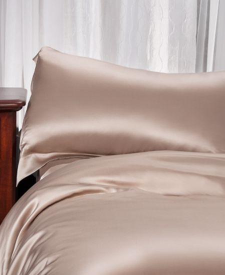 Picture of Aus Vio Silk Pillow Case - Pebble - Queen Size
