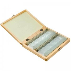 100 Prepared Microscope Slides w/ Wooden Case